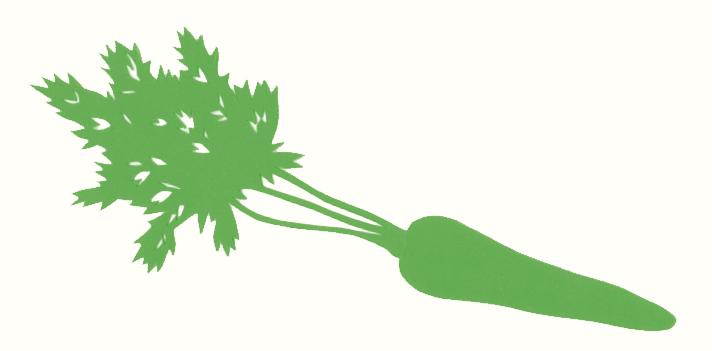Bioco Illustration Rüebli, von Selina Kallen