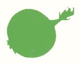 Bioco Gemüse Illustration, von Selina Kallen